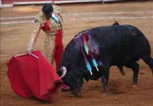 torero-antonio-bricio-y-toro-madrilisto-foto-efe.jpg